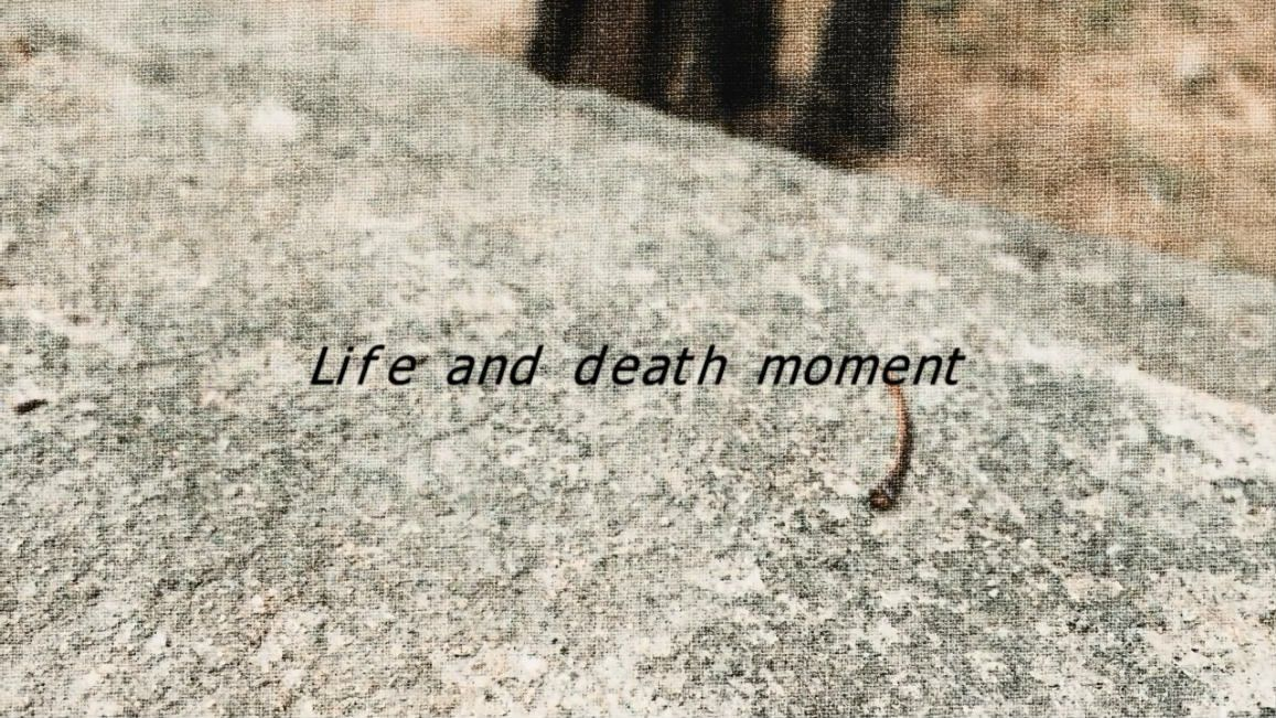 Life and death [00_00_01][20181203-180847-0].JPG