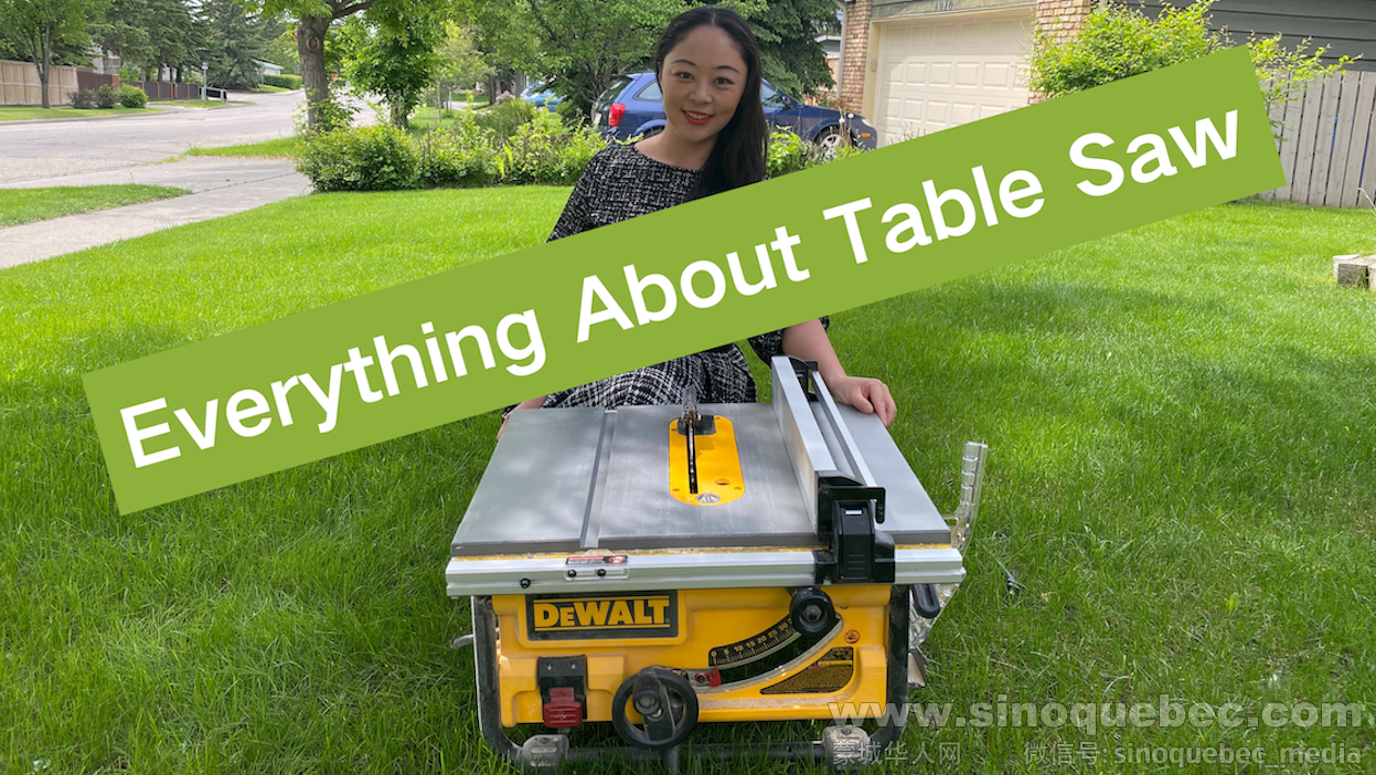 Everything About Table Saw.png